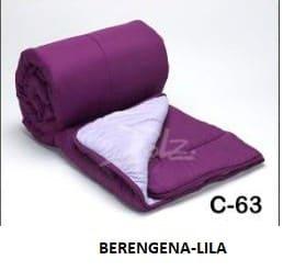 63 BERENJENA-LILA